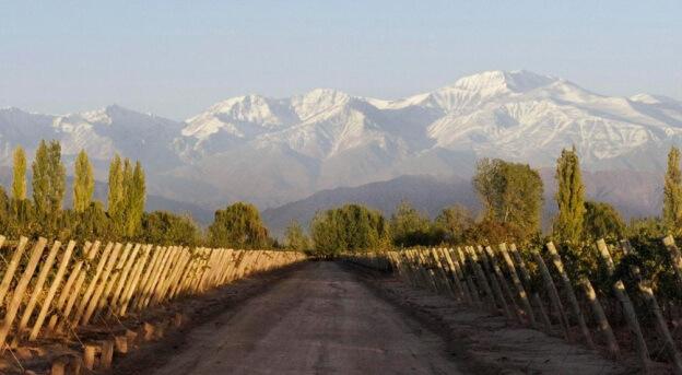 vinhedos-novo-mundo-argentina-chile-uruguai-vinho