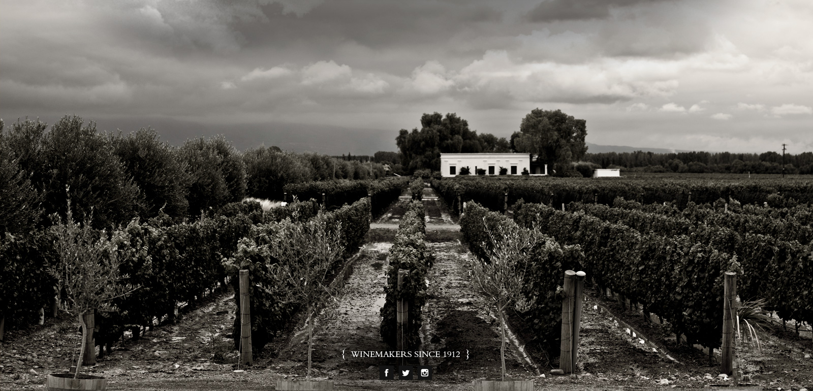 pulenta-estate-vinicola-andes-mendoza