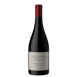 Vinho Tinto Zuccardi Poligonos Malbec 2015