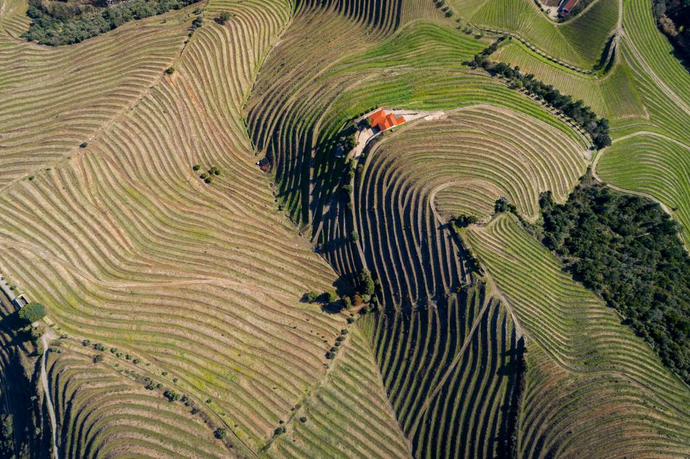 grandcru_portugal_douro_terroirs_aerial