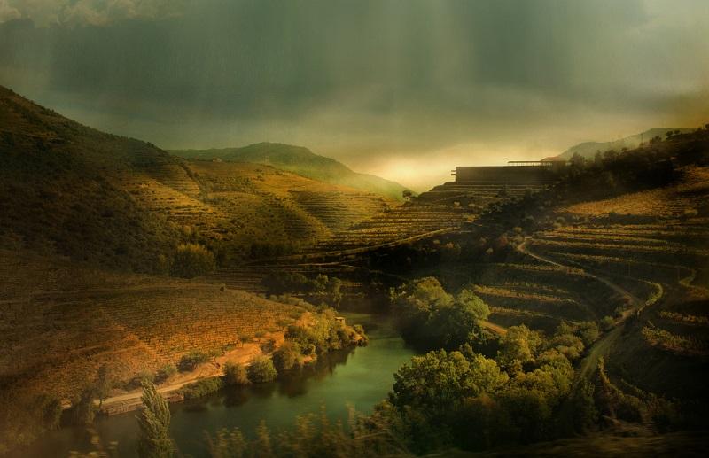 niepoort-vinicola-portugal-vinho-douro-quinta-de-napoles